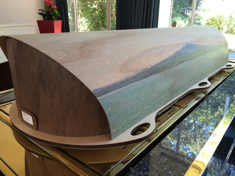 Wooden casket with Rangitoto theme